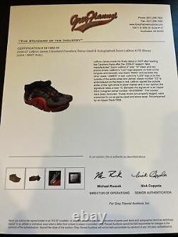 LeBron James Signed Game Used 2006-07 Zoom LeBron 4 PE Shoes UDA Upper Deck COA