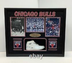 MICHAEL JORDAN AUTOGRAPHED UDA FRAMED AIR JORDAN SHOE, CHICAGO BULLS #goat