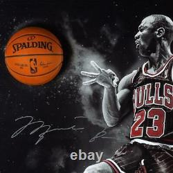 Michael Jordan Autographed No Look Framed Break Through Display Uda Le 123