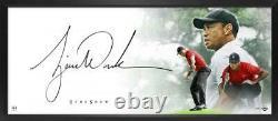 Tiger Woods Autographié La Pièce Maîtresse Du Spectacle Encadrée 46 X 20 Affichage Uda